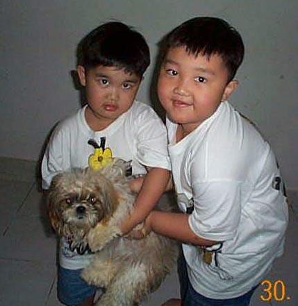 Anjing nya Om Iwan , Bali